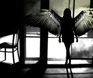 angel, wings, and black and white image