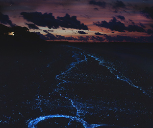 heart, light, and night image