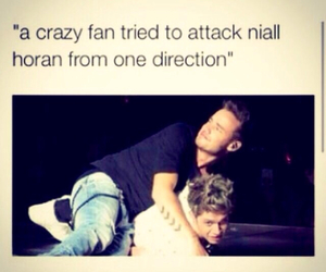 funny, one direction, and meme image