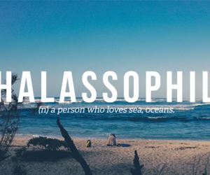 ocean, sea, and thalassophile image