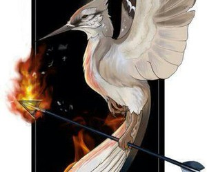 mockingjay, fire, and catching fire image