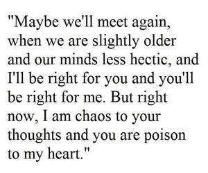 quote, poison, and love image