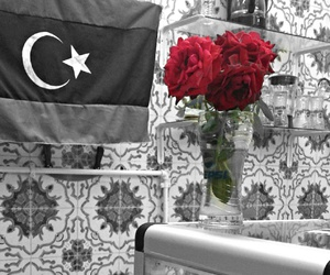 flag, Libya, and red image