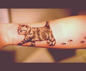 tattoo, cat, and tatoo image