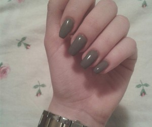 fossil, nails, and grey image