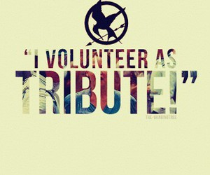 tribute, the hunger games, and katniss image