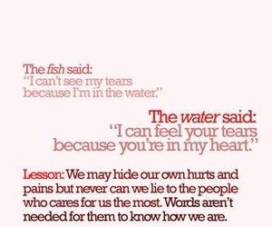 quote, fish, and life image