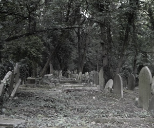 british, cementery, and by me image