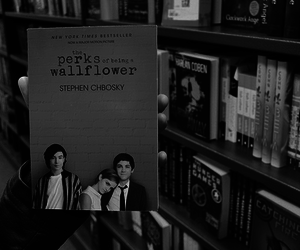 book, the perks of being a wallflower, and emma watson image