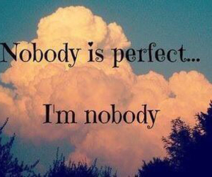 perfect, nobody, and quote image
