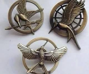 pin, the hunger games, and hunger games image