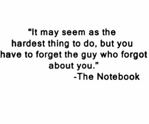 forget, love, and the notebook image