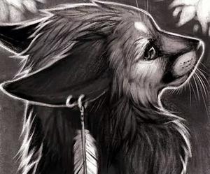 fox and furry image