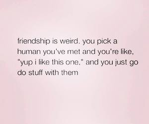 friendship, funny, and friends image