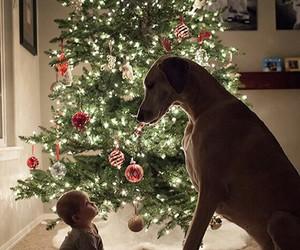 baby, lights, and christmas image
