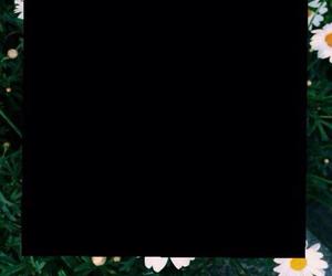 frame, overlay, and polaroid image