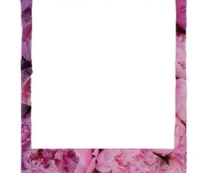 overlay, flowers, and frame image