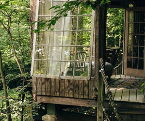 forest, nature, and treehouse image