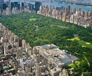new york, love, and Central Park image