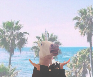 summer, artsy, and funny image