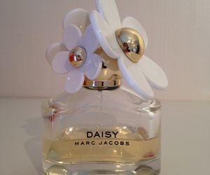 daisy, flowers, and gold image
