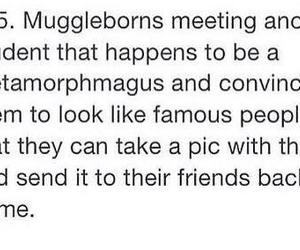 harry potter, muggleborns, and metamorphogus image
