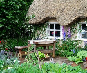 garden, flowers, and cottage image