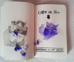 drawing, hamster, and wreck this journal image