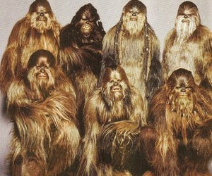 star wars, chewbacca, and family image