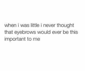 eyebrows, funny, and quote image