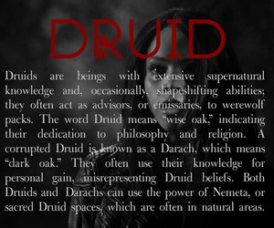 teen wolf and druid image