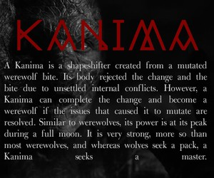 teen wolf, season 2, and kanima image