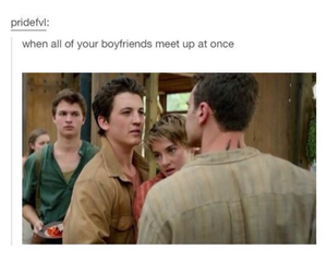 divergent, insurgent, and funny image