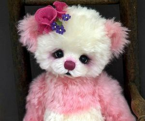 nounours, ours, and peluche image