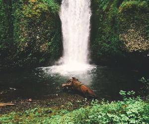 beautiful, river, and waterfall image