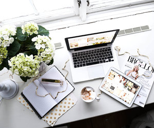 flowers, magazine, and white image