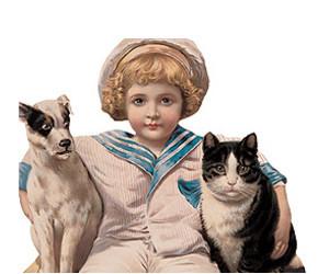 enfant and chat et chien image