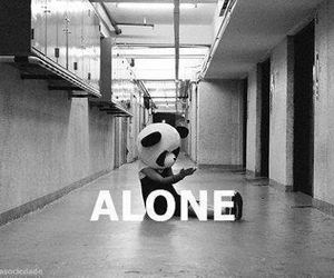 alone, panda, and sad image
