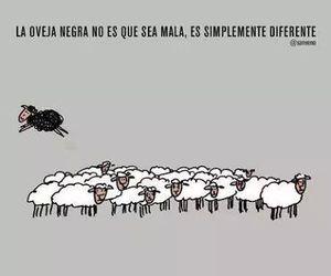 sheep, diferente, and oveja negra image