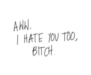 bitch, hate, and quotes image