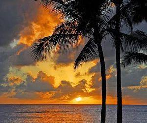 summer, sunset, and beach image