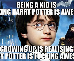 harry potter, awesome, and perfect image