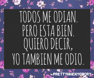 i hate me, frases, and quotes image