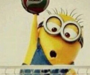 volleyball. minion. ball image