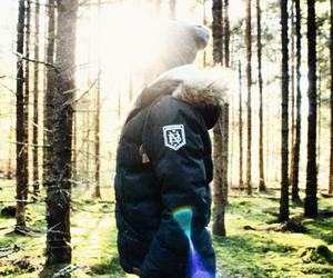 fashion, forest, and sunset image