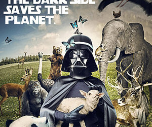 animals, darth vader, and earth hour image