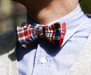 adorable, aw, and bow tie image