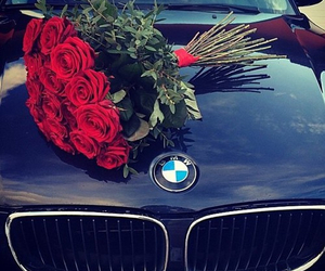 bmw, flower, and roses image