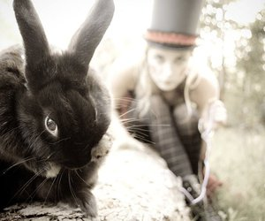 bunny rabbit, mad hatter, and tea image