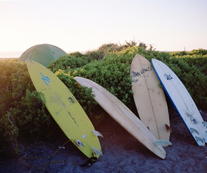 adventure, ocean, and surf boards image